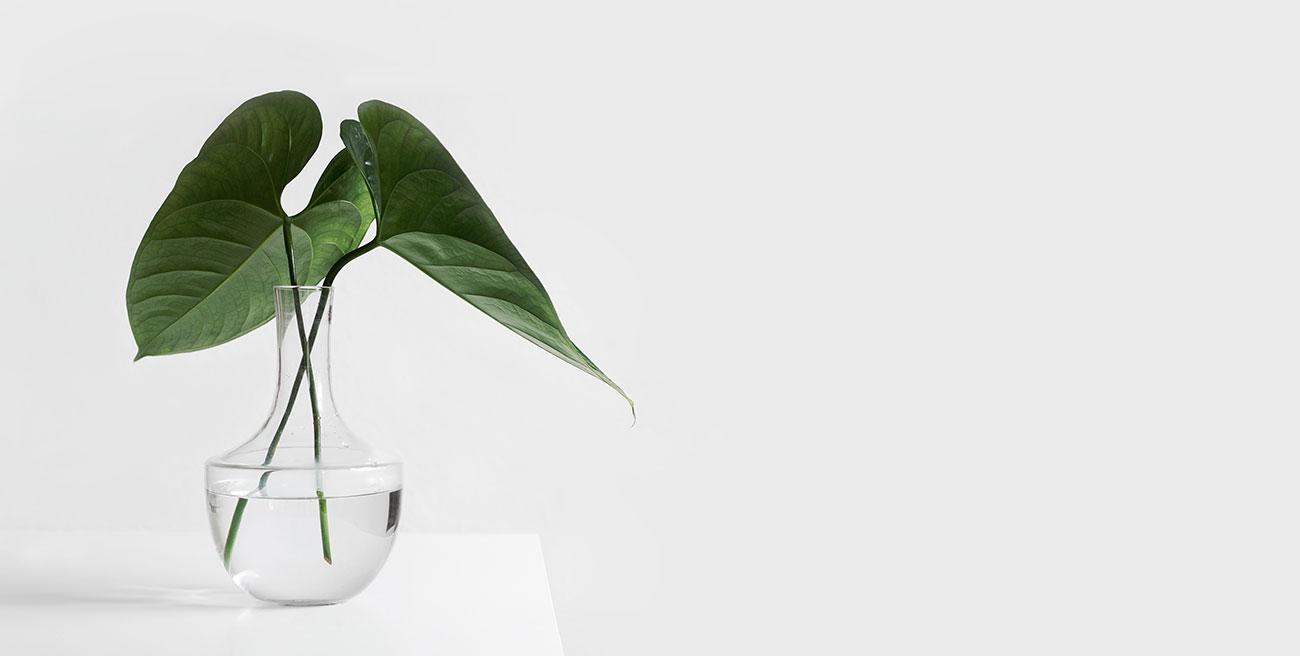 Définition du minimalisme